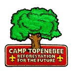 Boy Scout Camp Patches